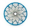 12-speed cassette (SRAM XD Freehub)